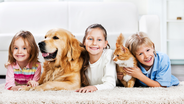 Children with animals lying down on the carpet