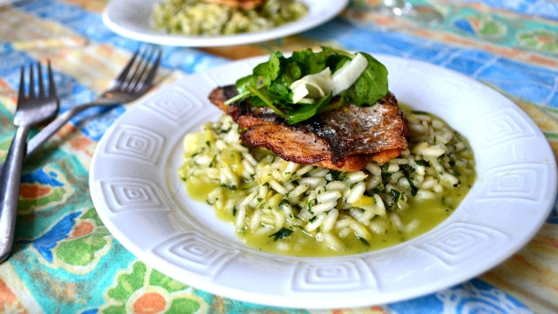 11 - Ramp and Wild Garlic Risotto with Bream, Fennel