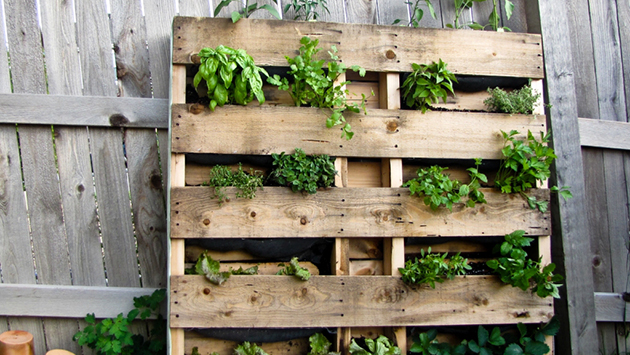 build a balcony How To Build A Balcony Garden On A Shoestring Budget Lifed