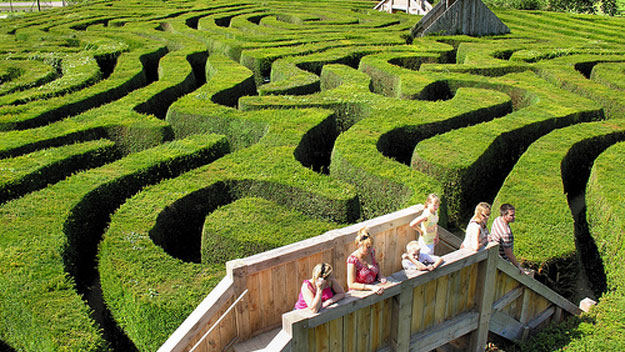 Family walking through Longleat Hedge Maze