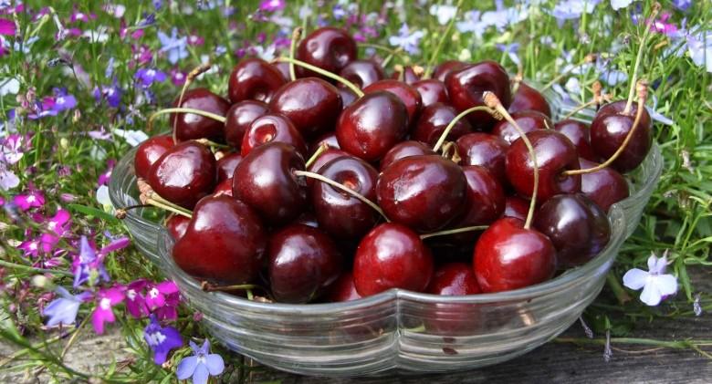 cherry-bowl (1)