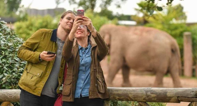 Chester-Zoo-couple-taking-selfie-with-elephant-f-1068x711